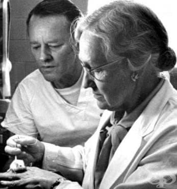 Приносът на Маргарет Питман в развитието на бактериологията и историята на ваксините - изображение