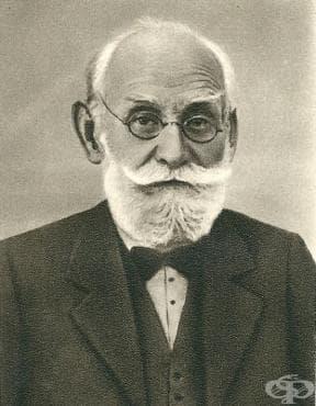 Работа на Иван Павлов след Първата световна война - изображение