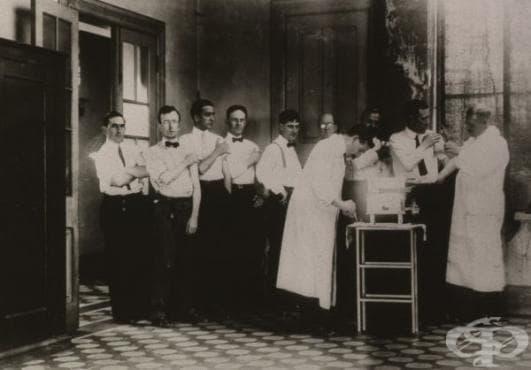 Разработване на първите ваксини срещу коремен тиф  - изображение