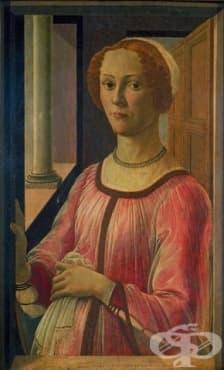 Развитие на акушерството и гинекологията през епохите на Средновековието и Ренесанса - изображение