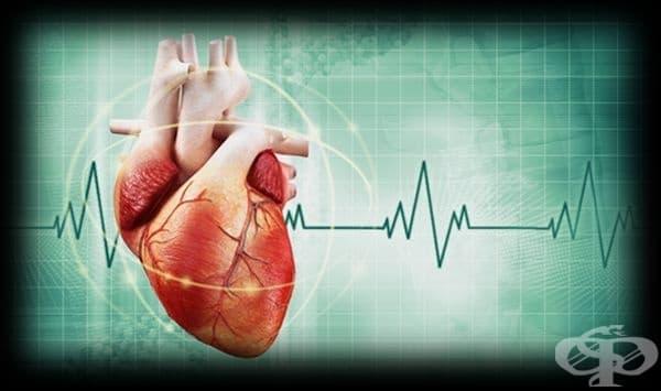 Развитие на кардиологията до 1950 година - изображение