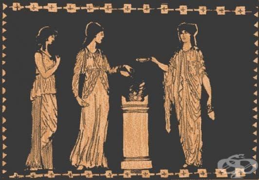 Развитие на гинекологията в Древна Елада през 5 век пр. Хр. - изображение