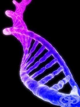 Развитие на молекулярната биология, видяно през откритието на двойната спирала - изображение