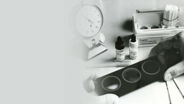 """Развитие на """"Рош"""" през 90-те години на 20-ти век  - изображение"""