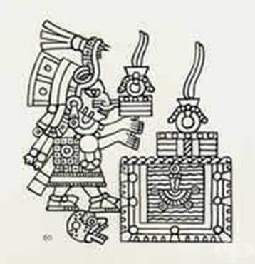 """Роля на """"Бадианския свитък"""" от 1552 година за развитието на билколечението, 1 част - изображение"""