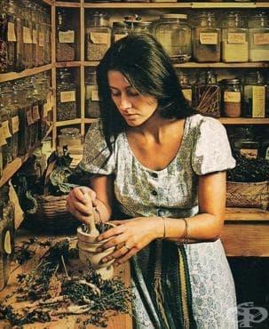 Роля и отношение към билярите в българската народна медицина през 19 век - изображение