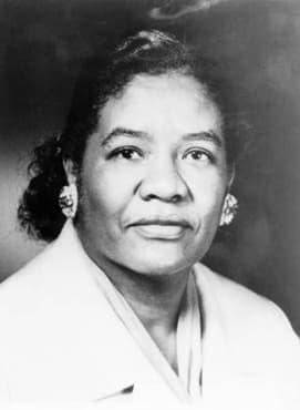 Роля на д-р Дороти Лавиния Браун за развитието на хирургията в САЩ - изображение