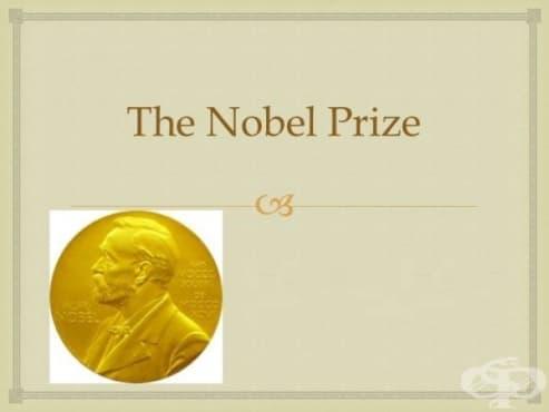 Връчване на Нобелова награда на Паул Ерлих  - изображение