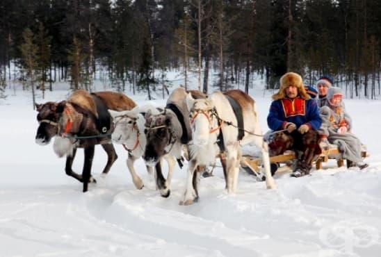 Традиционната медицина на саамите - най-северните жители на Европа - изображение