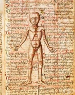 Странни средновековни лекарства, които днес смразяват усмивката ни - изображение