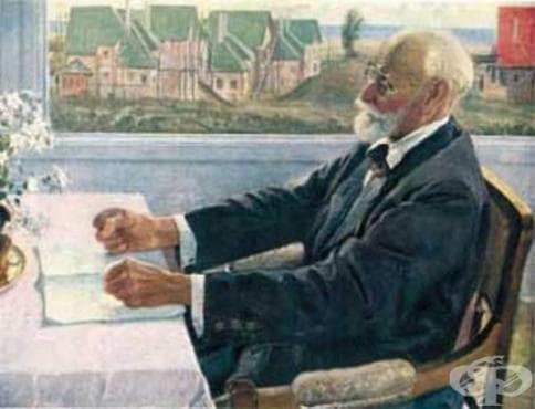 Съпоставка между съвременните изследователски методи и експериментите на Иван Павлов - изображение