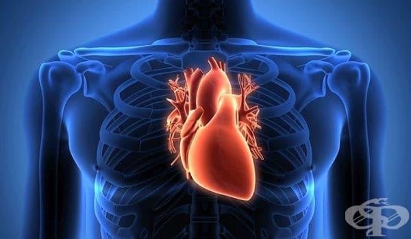 Новаторска сърдечна трансплантация от 70-те години на ХХ век  - изображение