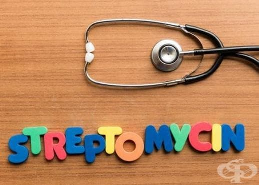 Създаденият през 1946 година стрептомицин: антибиотикът, който лекувал успешно туберкулозата - изображение