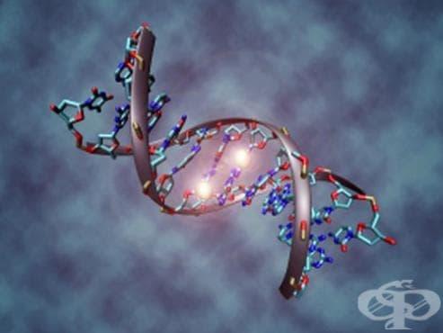 Създаване на представата за онкогените - изображение