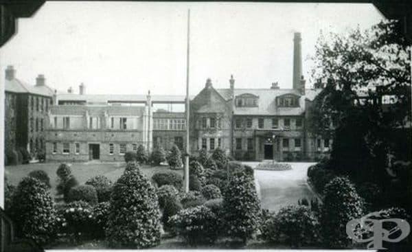 """Създаване на детската болница """"Alder Hey"""" в Ливърпул  - изображение"""