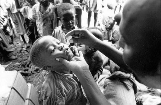 Създаване на живата ваксина срещу полиомиелит - изображение