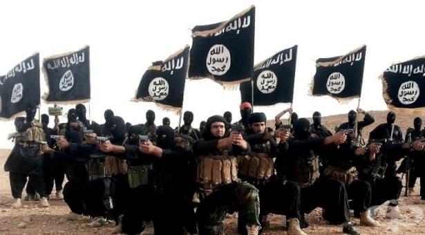 История на тероризма: от зараждането му във Франция до 11 септември 2001 г. - изображение