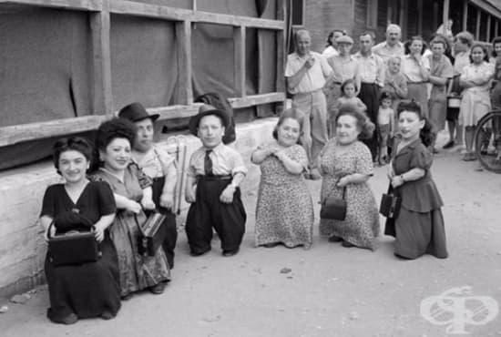 Историята на преживялото ужасите на Аушвиц семейство Овиц - изображение
