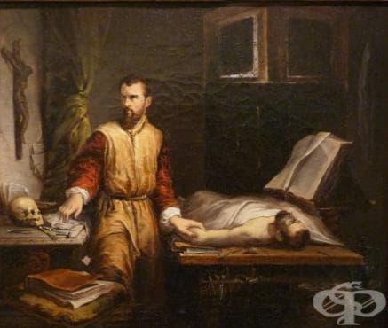 Трудове на Амброаз Паре в областта на хирургията - изображение