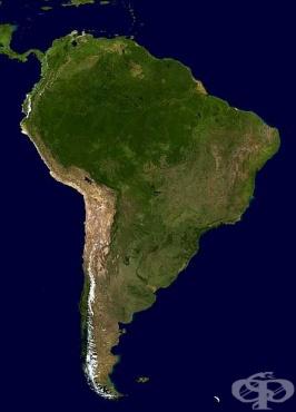 История на медицината в Южна Америка - изображение