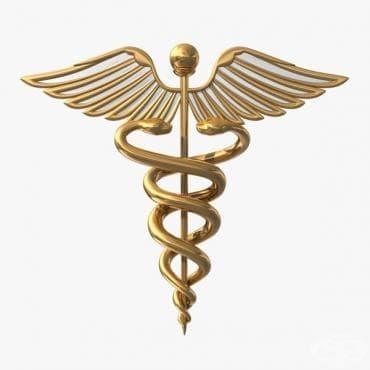Устав на медико-хирургическата академия в Русия от 1808 година,касаещ фармацевтичното образование - изображение