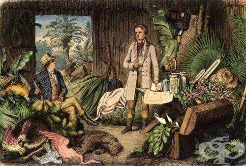 Влияние на Хумболтовата наука върху историята на биологията - изображение