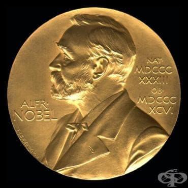 Връчване на Нобелова награда на Иван Павлов през 1904 година - изображение