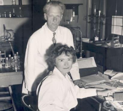 Заедно в живота и в науката: Карл и Гърти Кори и приносът им в развитието на медицината през 20 век - изображение
