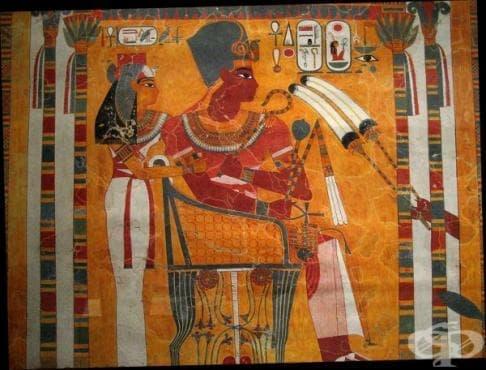 Знания по анатомия и физиология на древноегипетските лекари - изображение