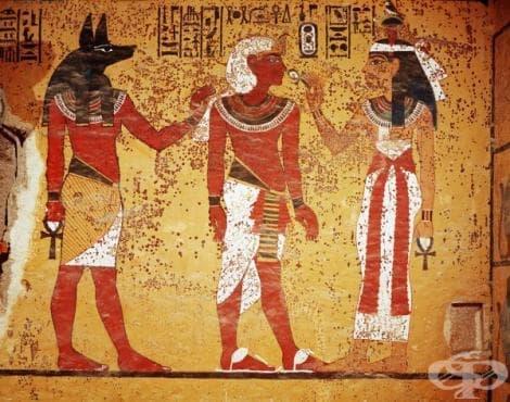 Знания за травматологията в Древен Египет - изображение