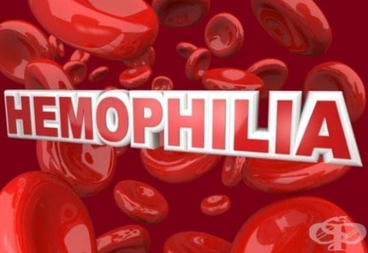 Хранене при хемофилия - изображение
