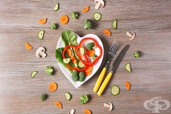 Ролята на метаболизма в живота на човека. Храни и фактори, повлияващи процеса - Част 2 - изображение