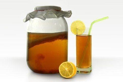 Комбуча - чаена гъба, която върши чудеса - изображение