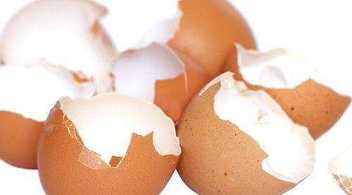 Черупката на кокошето яйце - природен лечител! - изображение
