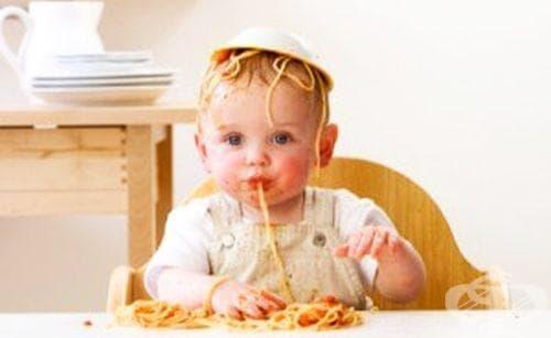Ред на въвеждане на нови храни при бебетата (8-12 месеца) - изображение