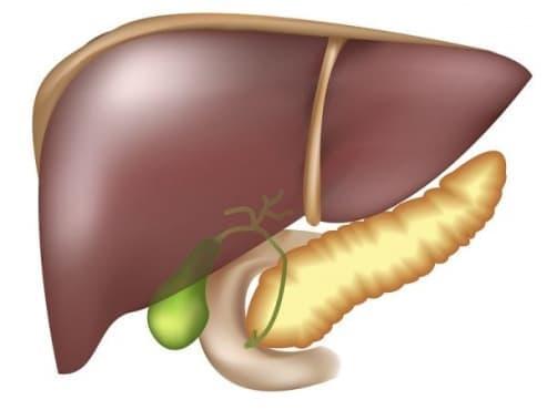 Хранене при чернодробна недостатъчност - изображение
