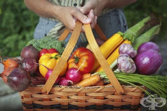 Дванадесет храни, повлияващи физическата болка - Първа част - изображение