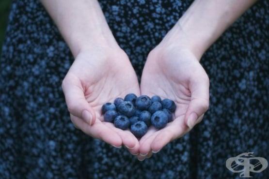 """С какво да """"храним"""" сърцето - изображение"""