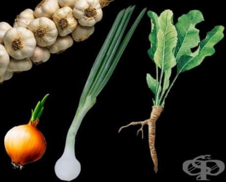 Как да си набавим витамини преди зимата - изображение