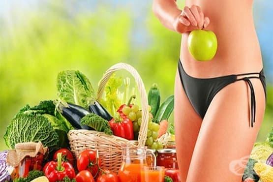 Ролята на метаболизма в живота на човека. Храни и фактори, повлияващи процеса - Част 1 - изображение