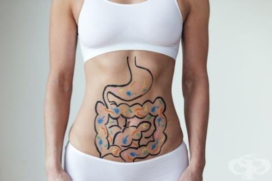 Хранене при Синдром на раздразненото черво - изображение