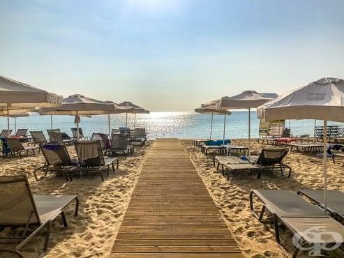 Трябва ли България да приема туристи от чужбина през лято 2020? - изображение