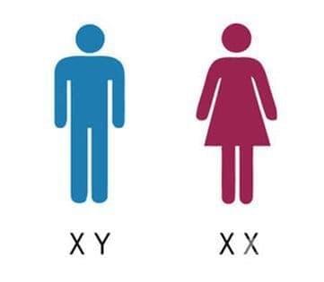 Да се забранят ли със закон операциите за смяна на пола? - изображение