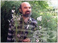 Доктор Димитър Пашкулев
