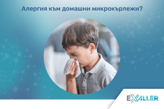 Д-р Тихомир Мустаков: Детската астма – ролята на алергените, домашните микрокърлежи и как да помогнем - изображение