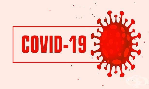 Д-р Трифон Вълков: Водноелектролитен дисбаланс по време на COVID-19 пандемия - изображение