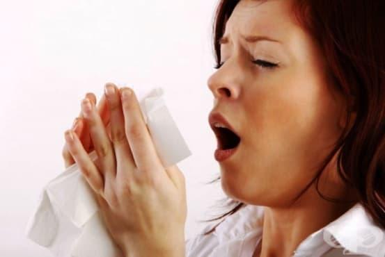 Води ли контролът на алергичния ринит до контрол на бронхиалната асма - изображение