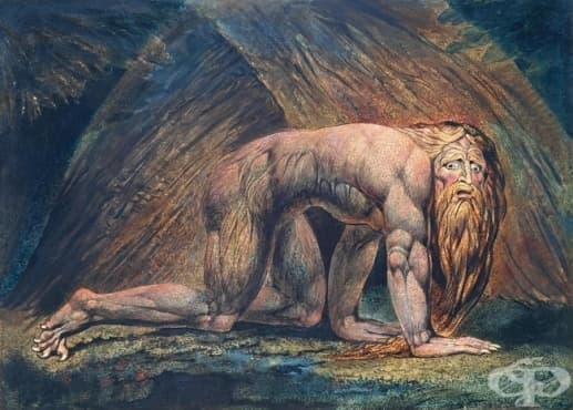 10 от най-лудите владетели в световната история - част 2 - изображение