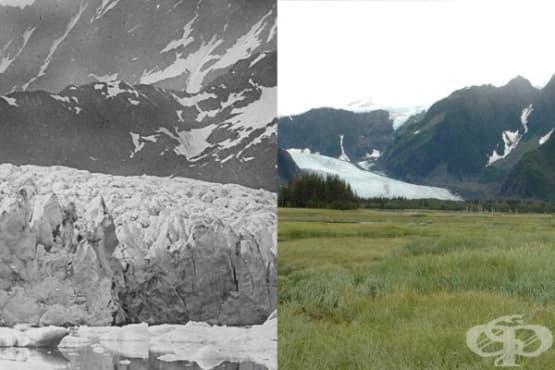 #10yearschallange се превърна в послание за екологичната криза, която настъпва - изображение