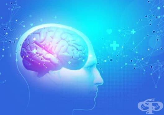13 неочаквани неща, които вредят на мозъка - изображение